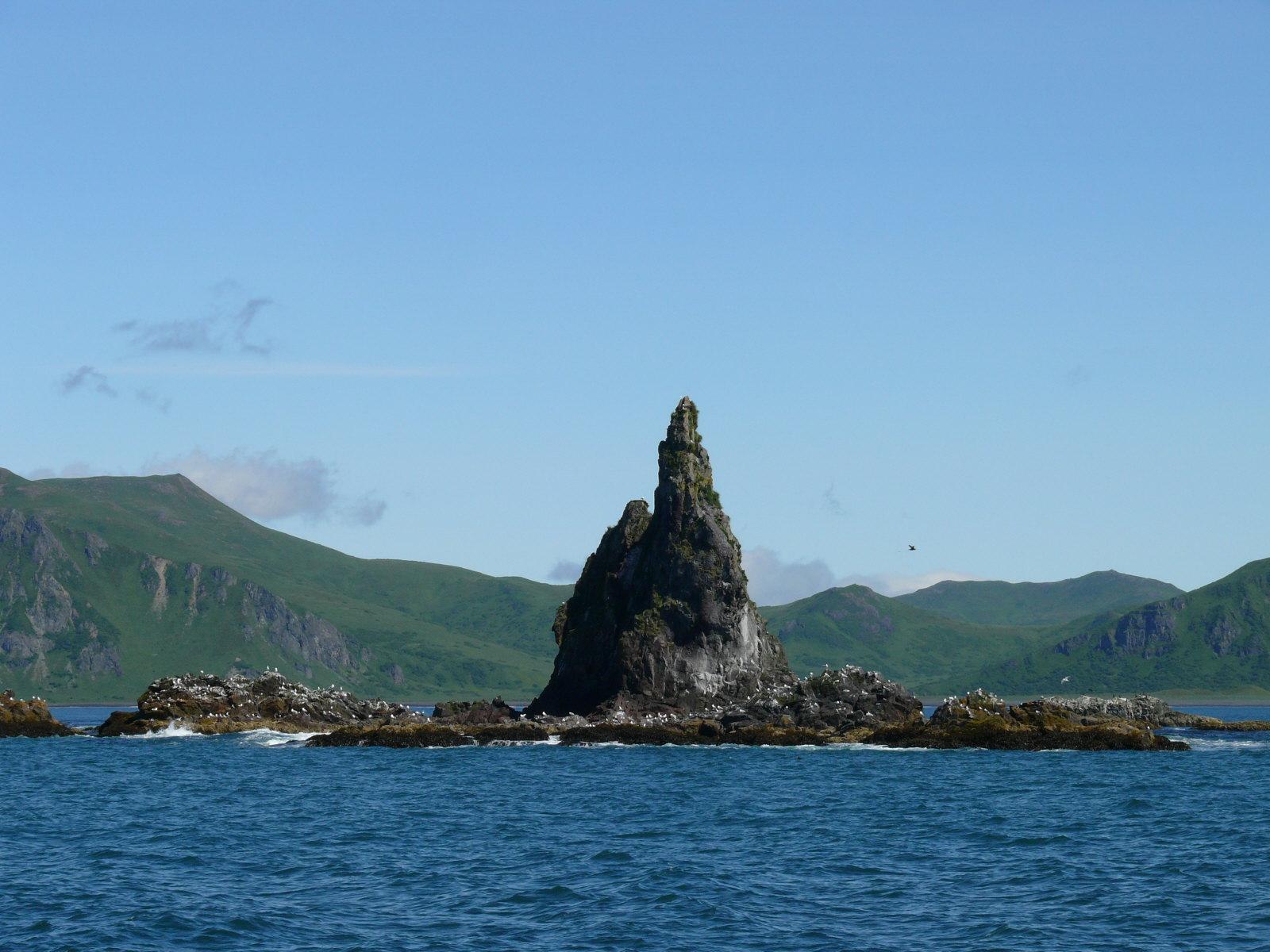 Unimak Island, July 2008